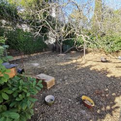 Un grand jardin spacieux